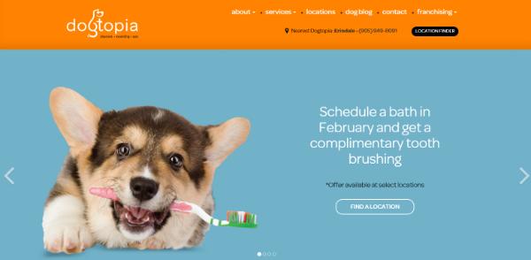 dogtopia-blog