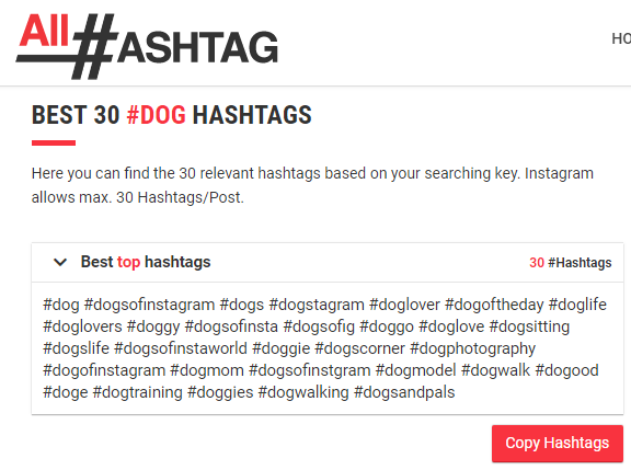 best dog hashtags